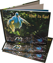 Photo Journal Book - After Its Kind Available