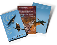 Wildlife Posters Available